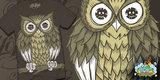 "HOTLIFE - ""OWL IN THE SENATE"""
