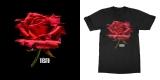 Tiesto - Glitch Rose
