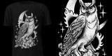 Neo owl