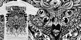 MCMB mystic owl