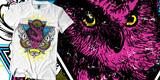Cosmic Owl (SOLD)