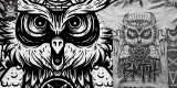 BMTH-owl