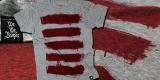 The Rebellious Stripes