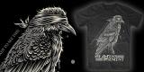 Blind Crow