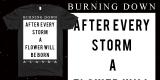 Burning Down Alaska - Quote