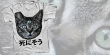 blackoath - three eyed cat t-shirt