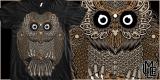 Owl Persuasion