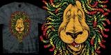 Santa Cruz - Lion Ratsa